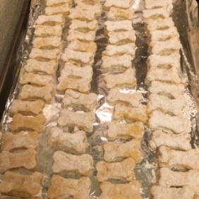 chicken biscuit 3